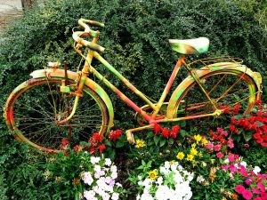 Multi-coloured bicycle parked in the garden
